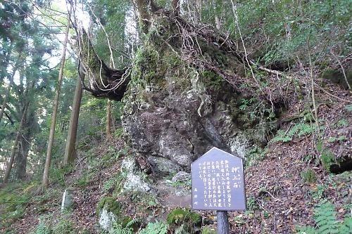 20151121choishimichi16